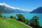 Paysage Lac de Brienz 01 BE